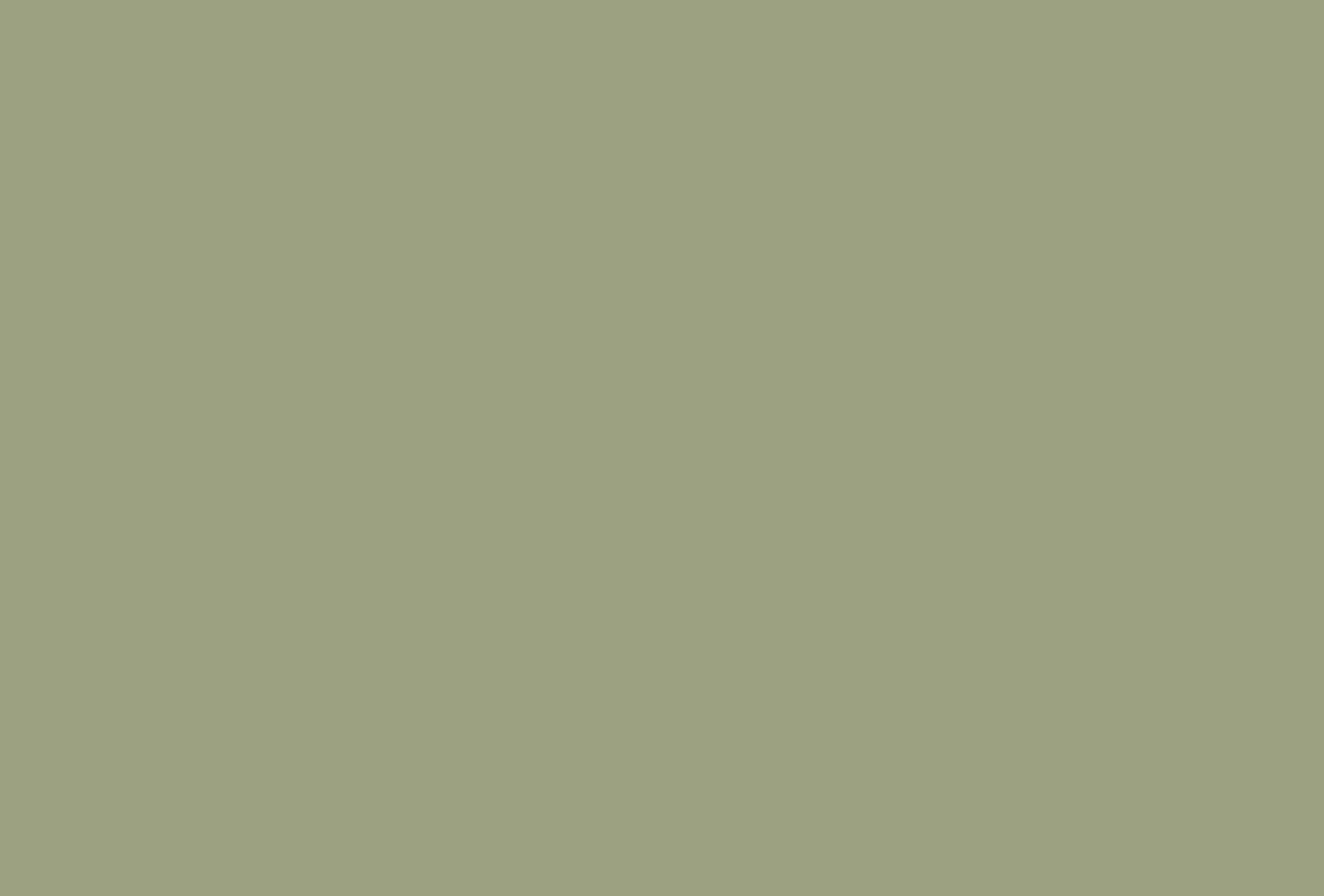 – Velas Ecológicas –